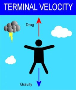 Derive an expression for terminal velocity of a small sphere in a viscous liquid.