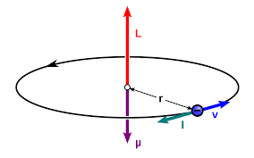 Magnetic moment of a revolving electron, and Bohr magneton, class 12
